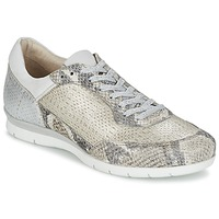 Shoes Women Low top trainers Mjus FORCE Serpent / Silver
