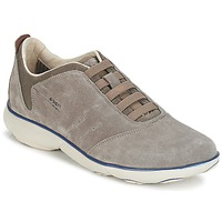 Shoes Men Low top trainers Geox NEBULA B Grey