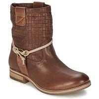 Shoes Women Mid boots Koah DANIA Brown