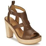Sandals Coclico SHAE