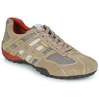 Shoes Men Low top trainers Geox SNAKE Beige
