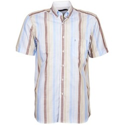 Clothing Men short-sleeved shirts Pierre Cardin 539936240-130 Blue / Beige / Brown