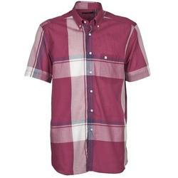 Clothing Men short-sleeved shirts Pierre Cardin 538536226-860 Mauve / Purple