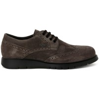 Shoes Men Derby Shoes Frau SUEDE EBANO    121,6