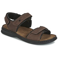 Shoes Men Sandals Josef Seibel RAFE Brown / Black