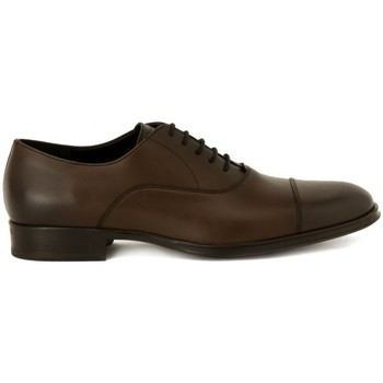 Shoes Men Brogues Frau SIENA FANGO    109,4