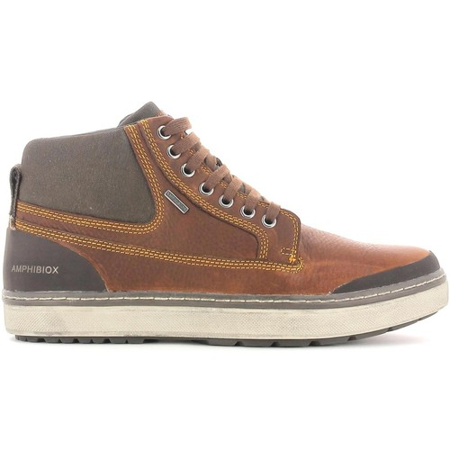 Shoes Men Hi top trainers Geox U44T1B 00046 Sneakers Man Brown Brown
