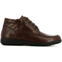 Shoes Men Derby Shoes Grunland PO571 Ankle Man Brown Brown