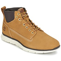 Shoes Men Hi top trainers Timberland KILLINGTON CHUKKA WHEAT Beige