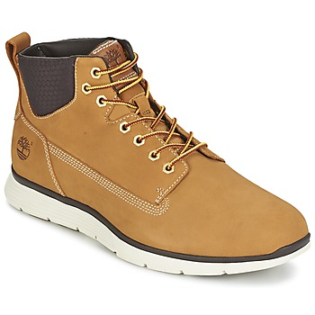 Shoes Men Mid boots Timberland KILLINGTON CHUKKA WHEAT Beige