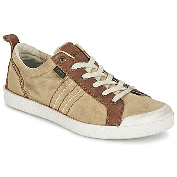 Low top trainers Kickers TRIDENT