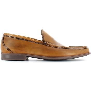 Shoes Men Loafers Lion 20681 Mocassins Man Brown Brown