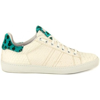 Shoes Women Low top trainers Stokton STAN PITONE    119,9