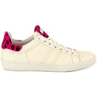 Shoes Women Low top trainers Stokton PITONE PANNA    119,9