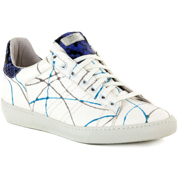 Shoes Women Low top trainers Stokton ALICE TURCHESE    121,6