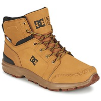 Mid boots DC Shoes TORSTEIN