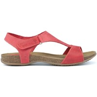 9d1481b7aeb5 INTERBIOS women Sandals - INTERBIOS - Free delivery with Spartoo UK !