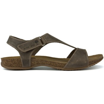 Shoes Women Sandals Interbios INTERMEDIATE ANATOMIC SANDALS 4420 BROWN