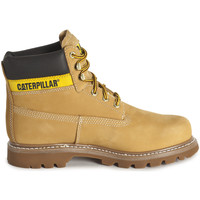 Shoes Men Mid boots Caterpillar Colorado Jaune