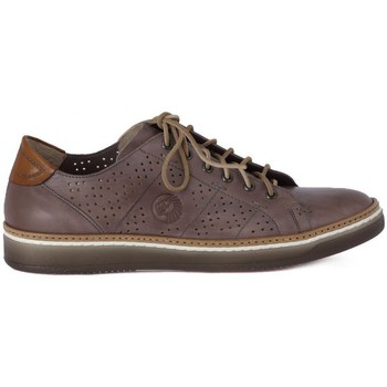 Shoes Men Low top trainers Lion ETRUSCO 211 PERLA    126,9