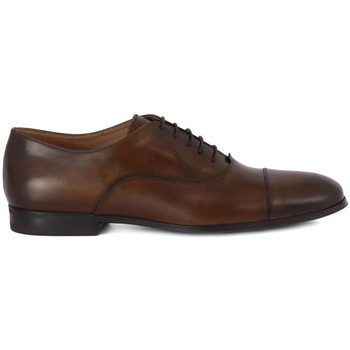 Shoes Men Brogues Frau SIENA CUOIO    104,1