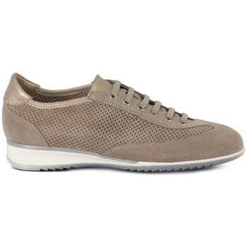Shoes Women Low top trainers Frau AMALFI SABBIA     86,6