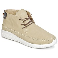 Shoes Men Hi top trainers Asfvlt YUMA BEIGE