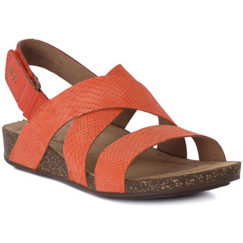 Shoes Women Sandals Clarks PERRI DUNES GRENADINE     77,9