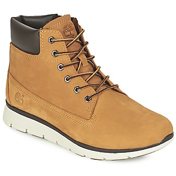 Hi top trainers Timberland KILLINGTON 6 IN