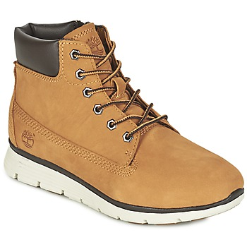 Shoes Children Hi top trainers Timberland KILLINGTON 6 IN Wheat