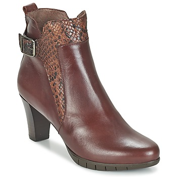 Shoes Women Ankle boots Wonders SAVODIA Brown