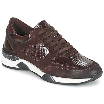 Shoes Women Low top trainers Dream in Green FARRICA BORDEAUX