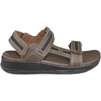 Shoes Women Sandals Joya CAPRI BROWN