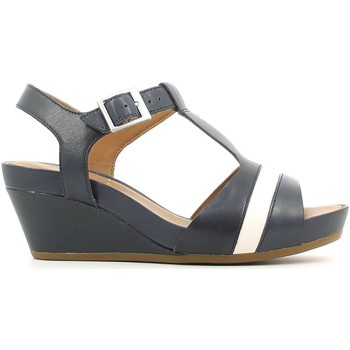 Shoes Women Sandals Clarks 115781 Wedge sandals Women Navy