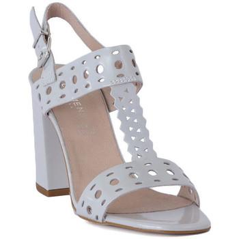 Shoes Women Sandals Carmens Padova ABRASIVO Grigio