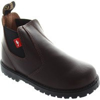 Shoes Chipmunks Jodhpur boy's Dark pull on chelsea school ankle dealer boots ne