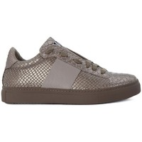 Shoes Women Low top trainers Stokton PITONE  BIGIO    156,6