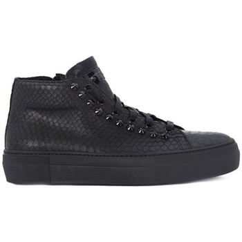 Shoes Women Hi top trainers Stokton PITONE  LUX BLACK    156,6