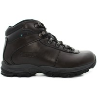 Shoes Men Mid boots Hi-Tec Eurotrek II WP Brown