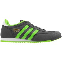 Shoes Women Low top trainers adidas Originals Dragon J Grey-Green