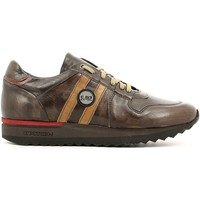 Shoes Men Low top trainers Rogers 555 Sneakers Man Brown Brown