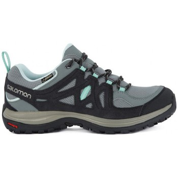Shoes Men Running shoes Salomon ELLIPSE 2 GTX W    112,5