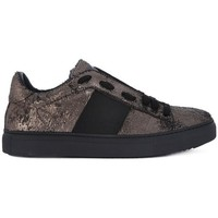 Shoes Women Low top trainers Stokton VIPERINA  BRONZE    156,6