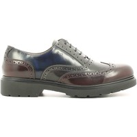 Shoes Women Derby Shoes Nero Giardini A616170D Lace-up heels Women Blue Blue