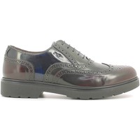 Shoes Men Brogues Nero Giardini A604492U Lace-up heels Man Bordeaux Bordeaux