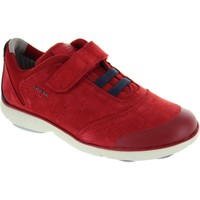 Shoes Boy Low top trainers Geox J Nebula B.A Red /Navy