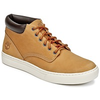 Shoes Men Hi top trainers Timberland ADVENTURE 2.0 CUPSOLE CHK Wheat