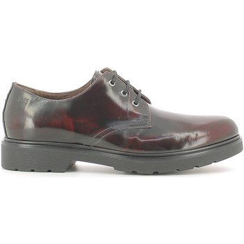 Shoes Men Derby Shoes Nero Giardini A604490U Lace-up heels Man Bordo' Bordo'