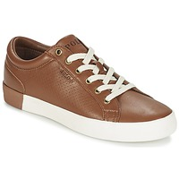 Shoes Men Low top trainers Ralph Lauren ALDRIC II Brown