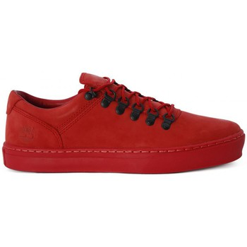 Shoes Men Low top trainers Timberland ADV 2 CUPSOLE    105,0